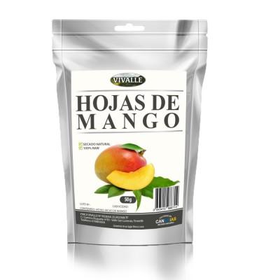 Mango Hoja Vivalle